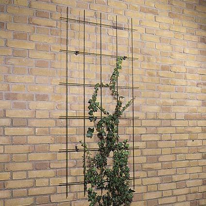 spandraadsysteem voor klimplanten