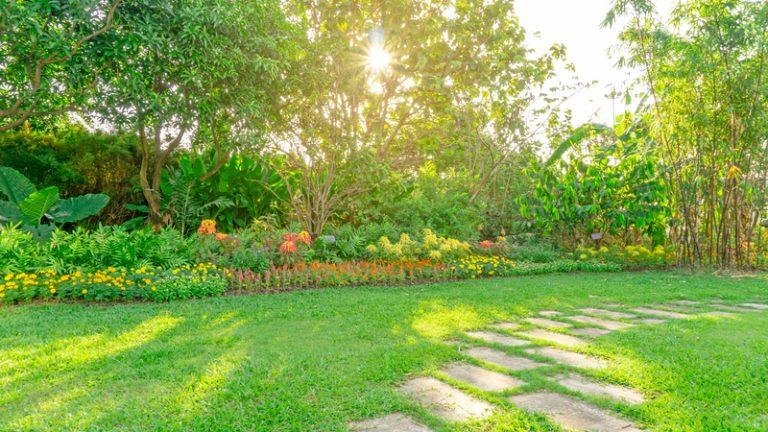 tuin-het-hele-jaar-door-groen
